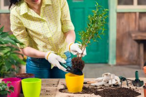 A woman gardening outside with gardening tools made for women. - ZoomBroom